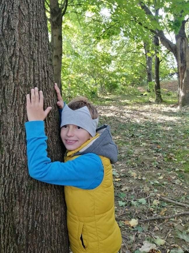 strom 6
